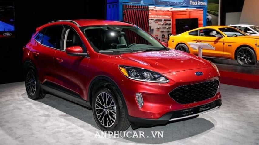 Ford Escape 2020 xe van han h